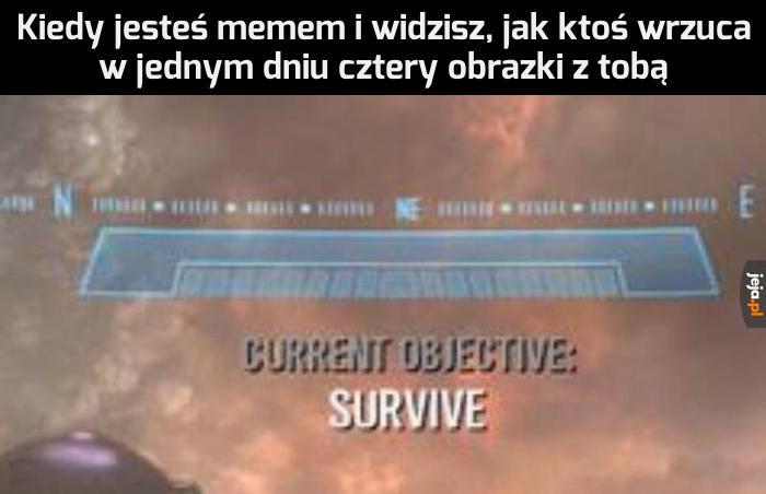 Nie chcę być martwym memem