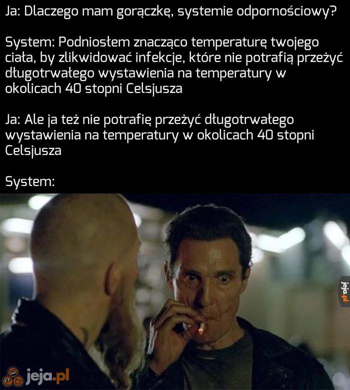 Czy próbował Pan zresetować system?