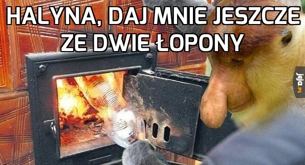 Janusz pali w piecu