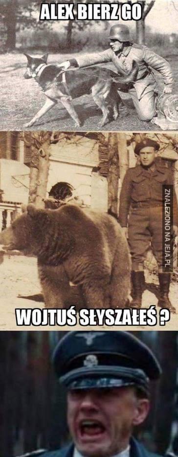 Zwierzęce porachunki w II Wojnie Światowej
