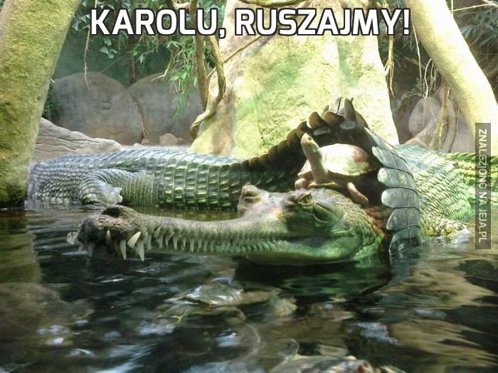 Karolu, ruszajmy!