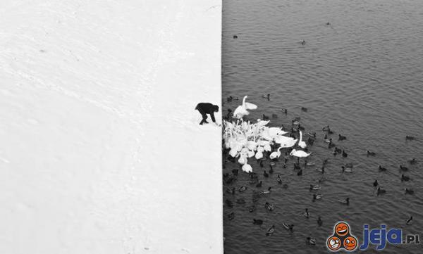 Biało-czarny świat