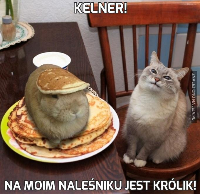 Kelner!