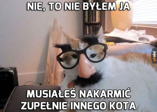 Maestro kamuflażu