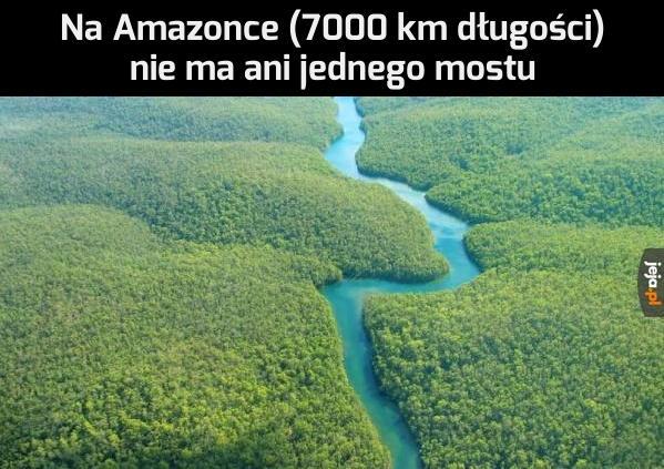 Wiedzieliście?