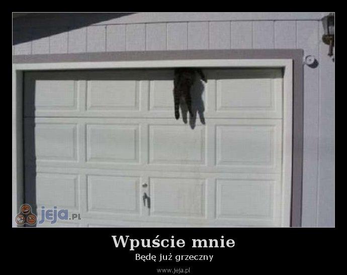 Wpuście mnie