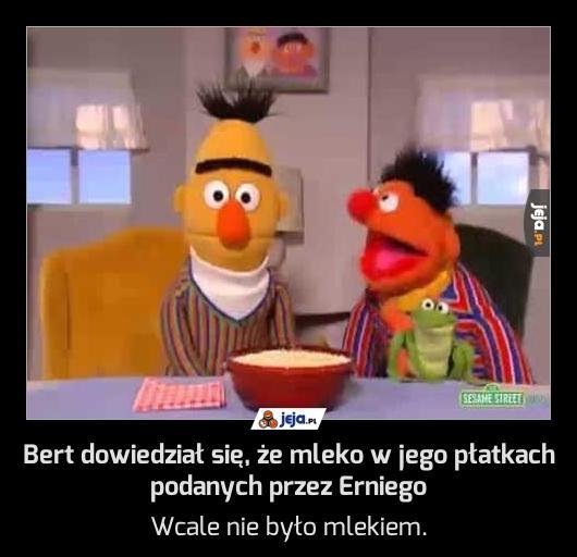 Bert dowiedział się, że mleko w jego płatkach podanych przez Erniego