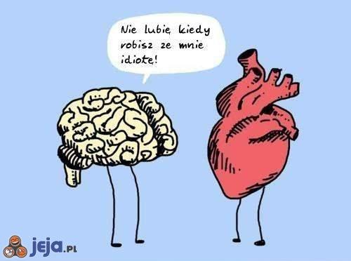 Mózg vs serce