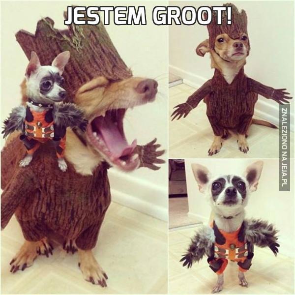 Jestem Groot!