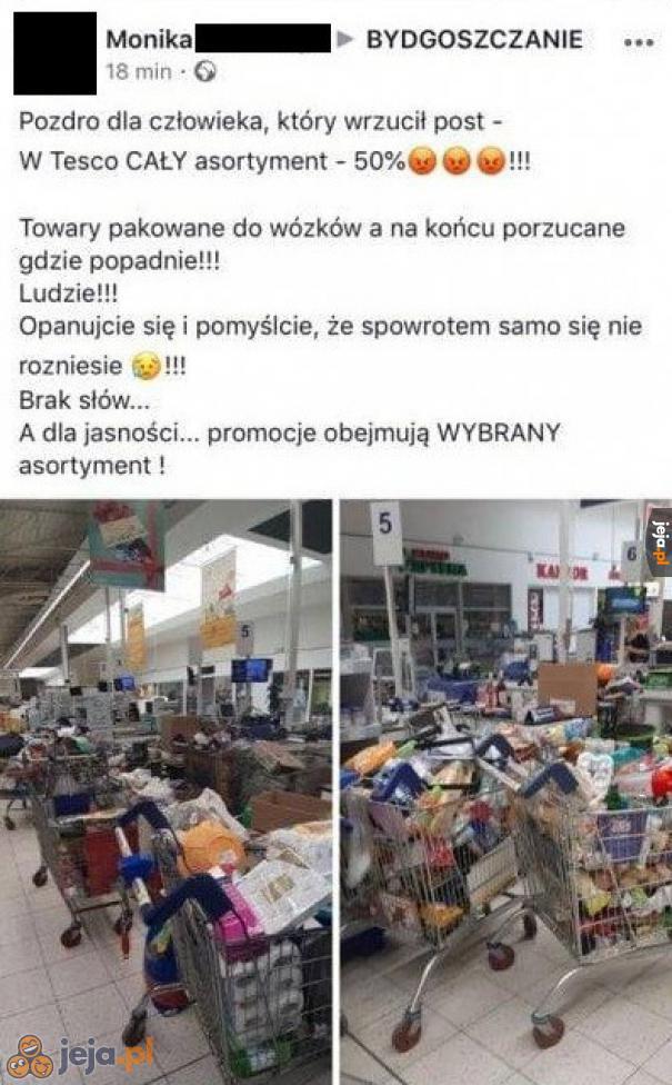 Polska cebula nie zna granic