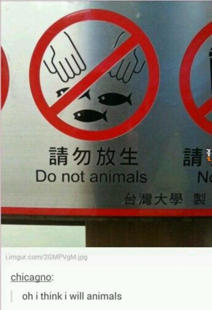 Nie zwierzętuj?