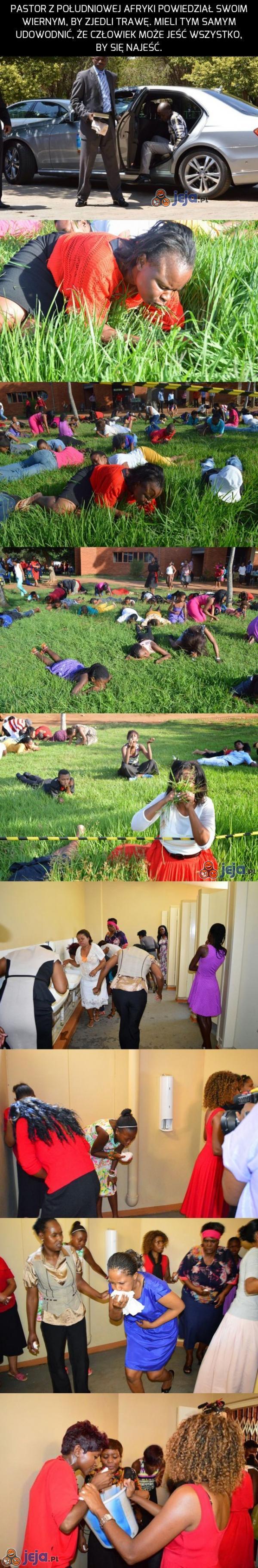 Pastor kazał im jeść trawę