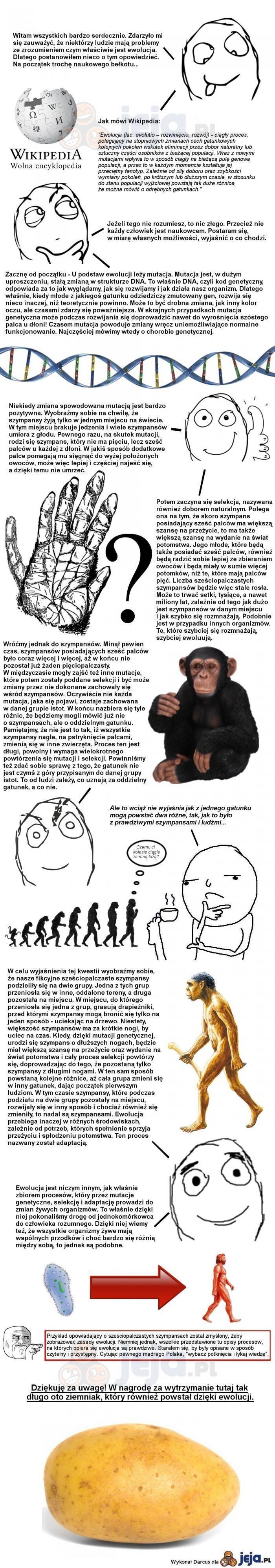 Kilka słów o ewolucji