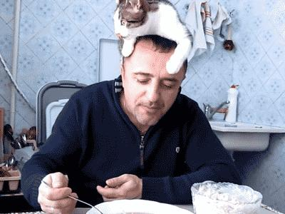 Śniadanie z kotem