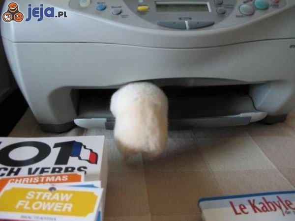 Żywy papier do drukarki