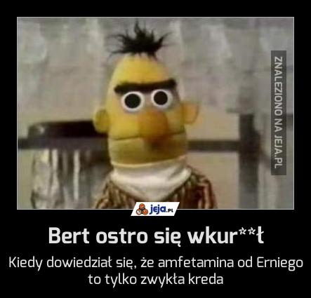 Bert ostro się wkur**ł