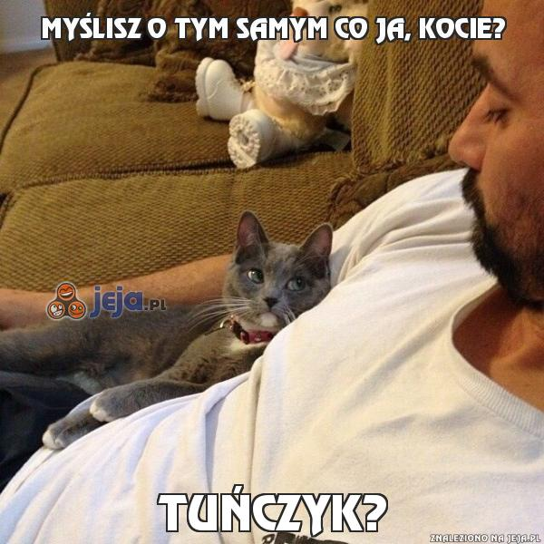 Myślisz o tym samym co ja, kocie?