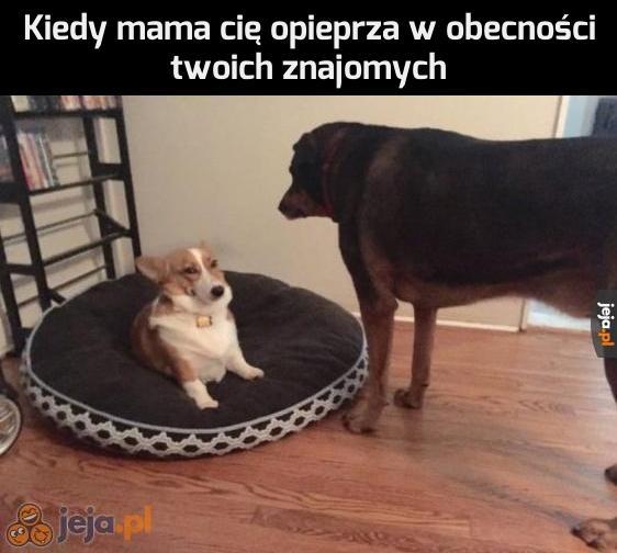 Mame, nie rób wiochy