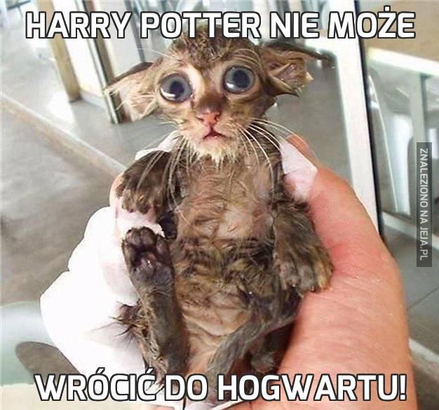 Harry Potter nie może