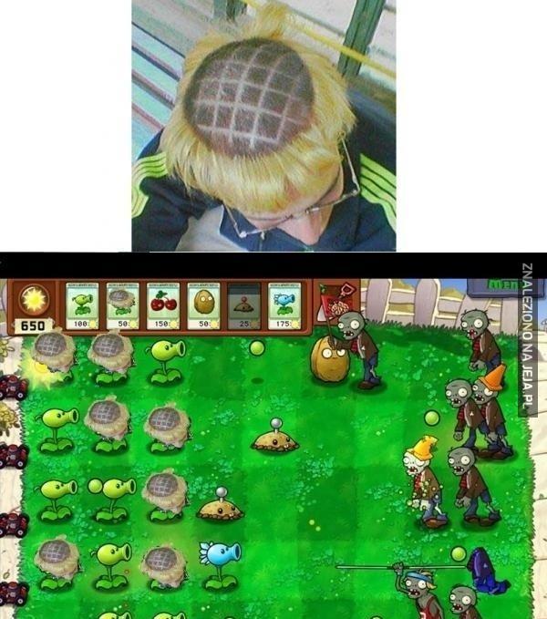 Człowiek słonecznik vs zombie