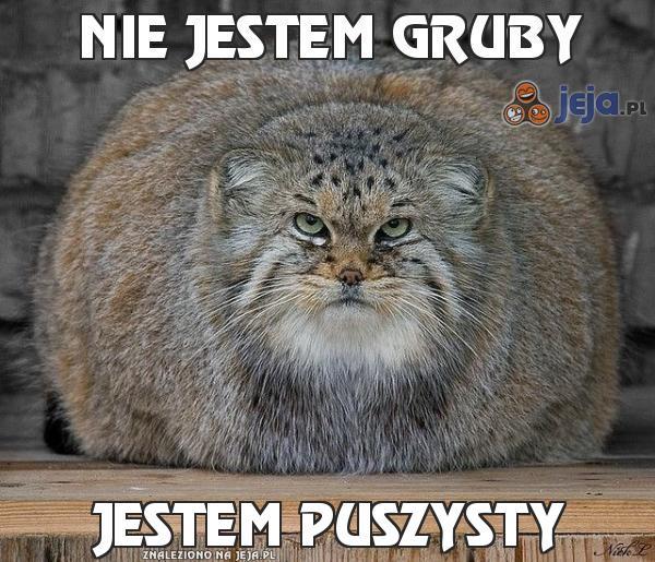Nie jestem gruby
