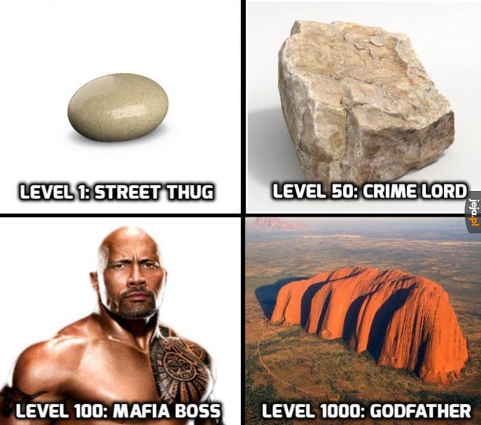 Ulubiona gra The Rocka