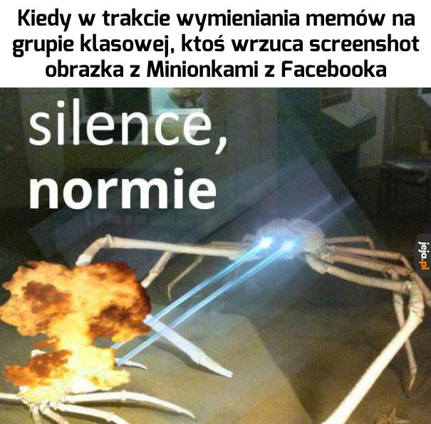 Tego nie godzi się nazywać memem!