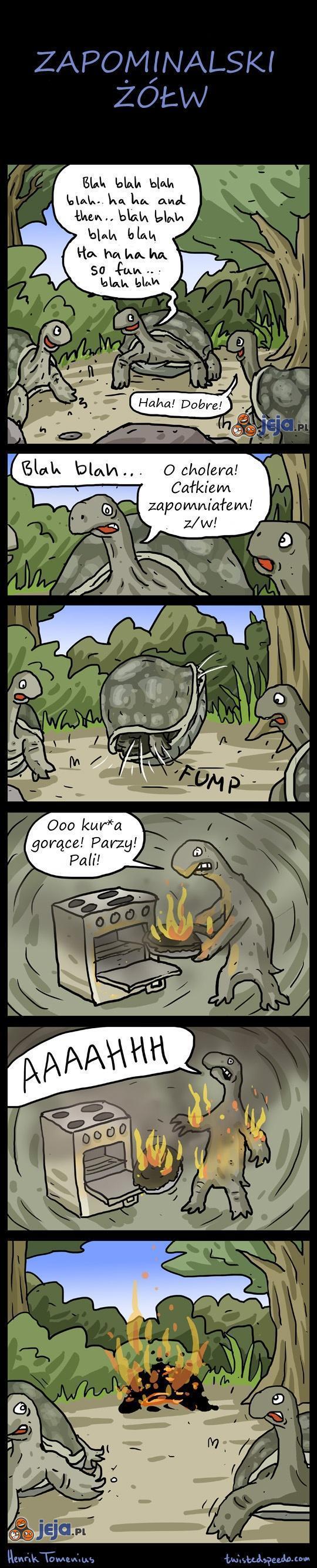 Zapominalski żółw