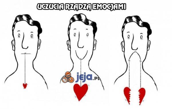 Uczucia rządzą emocjami