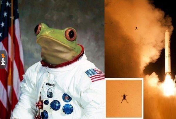 Pepe w kosmosie