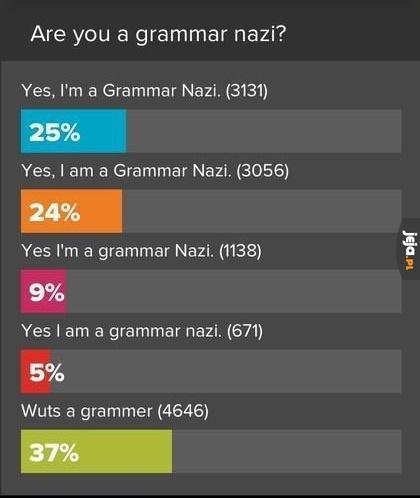 Czy zwracasz uwagę na gramatykę?