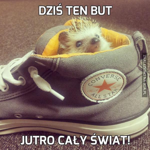 Dziś ten but