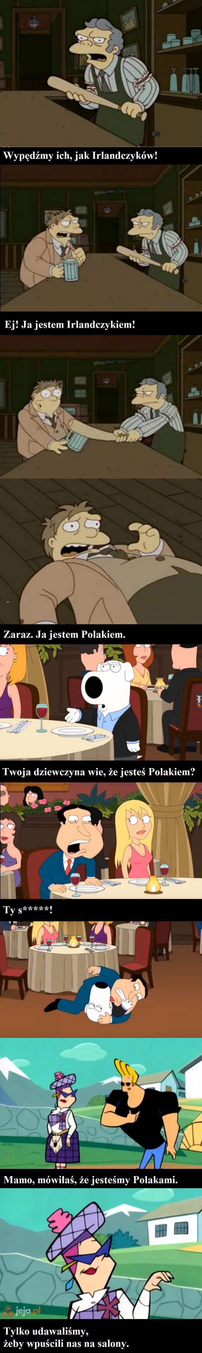 Polacy w kreskówkach