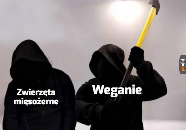 Jedz sojowe kiełbaski, Azor!