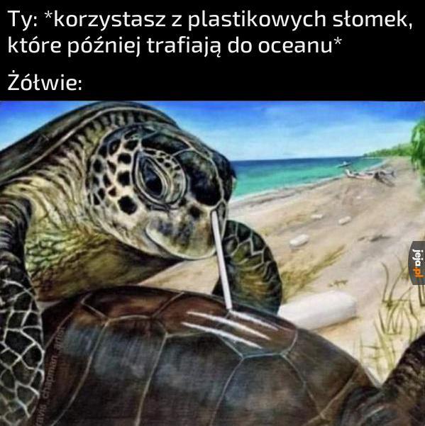 Nie rób tego, bo szkodzisz żółwikom