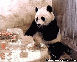 Panda dostaje rachunek w restauracji