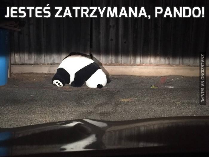 Jesteś zatrzymana, pando!