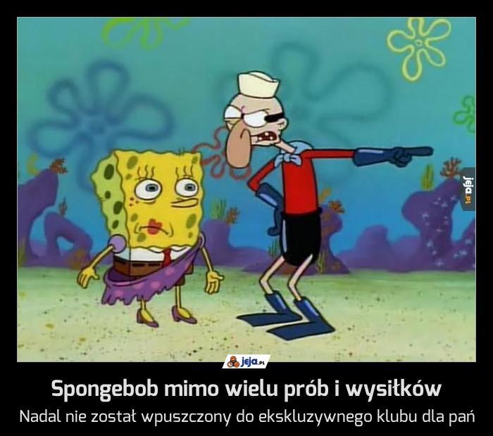 Spongebob mimo wielu prób i wysiłków
