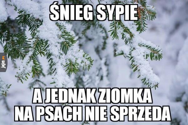 A to śnieg