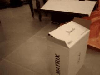 Pudełko Matrix