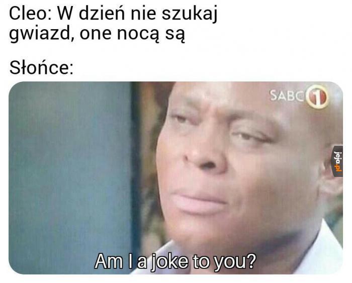 Polscy wykonawcy...