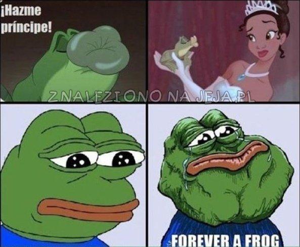Księżniczka i żaba