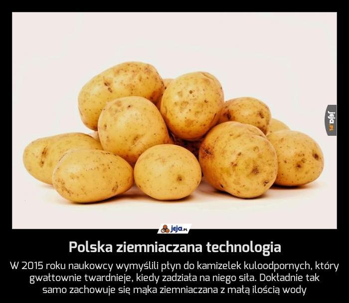 Polska ziemniaczana technologia