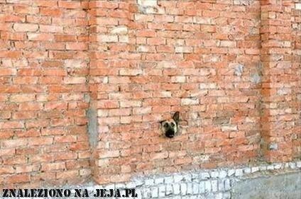 Pomyłka przy budowie