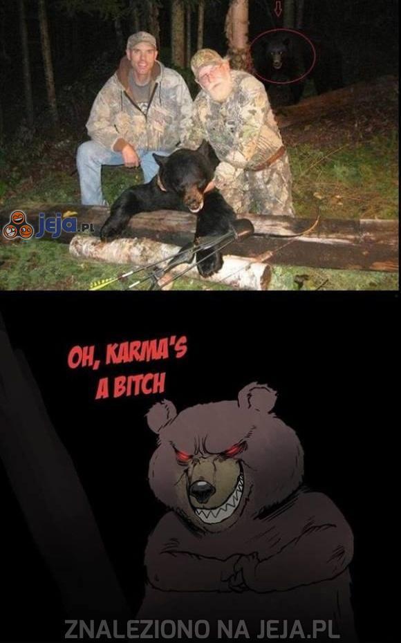 Zachciało się polować...