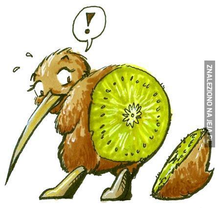 W końcu wiem z czego składa się kiwi!