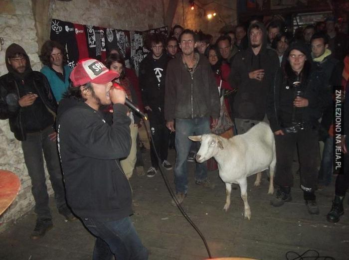 Gdy Twoja koza naprawdę lubi undergroundowy rap