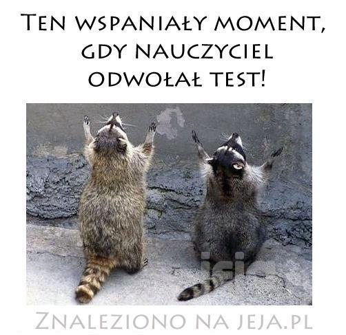 Test odwołany!