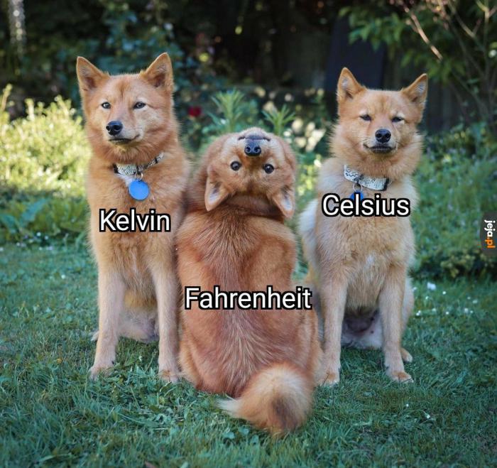 Kelvin sam w domu