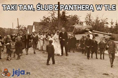 Taki tam, ślub z Pantherą w tle